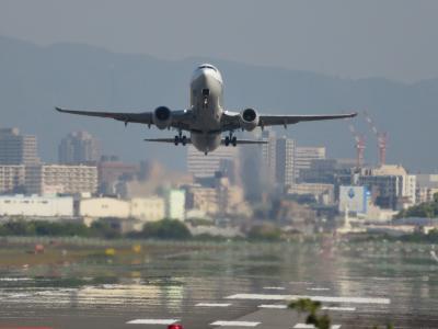 伊丹空港滑走路付近へお散歩