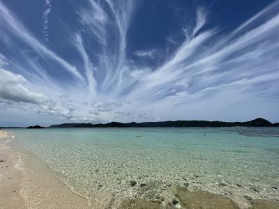 奄美、海と空と鳥と蝶と。行ったところ、食べたもの編。