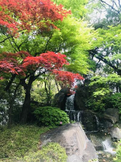 気分転換のひとり旅 ~大阪