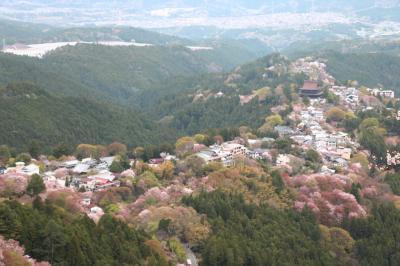 咲き誇る花々、そして温かい友人達に迎えられた京都・奈良旅(3)3日目は友人の案内で、けいはんな記念公園と奈良の室生寺へ。4日目は一人吉野山へ