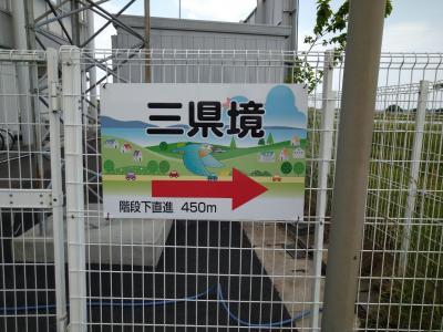 【埼玉・栃木・群馬】 三県境と、上皇様も召し上がられたという冷汁うどんを食す 【加須】