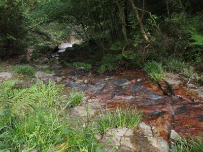 岡山県日帰り滝めぐり(3) 滝メグラーが行く228 塩掛の滝が危うく幻の滝となるところでした 総社市