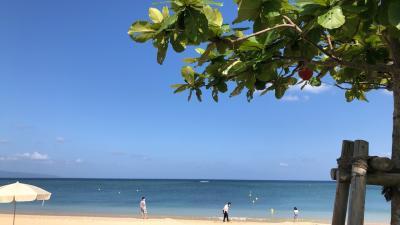 2021年4月はじめての石垣島。フサキビーチリゾート二泊三日、夫婦旅行③