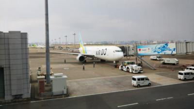羽田空港→函館空港(道南周辺)→羽田空港☆飛行機その1