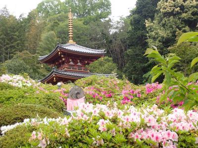 クロスカブで西国観音巡り 5日目 三輪山平等寺・大神神社へ行きました。