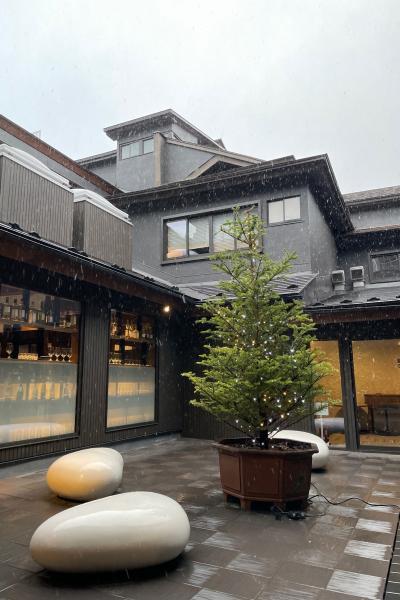 草津温泉・源泉一乃湯リピート&群馬サファリパークで動物三昧!まさかの雪にビックリ!