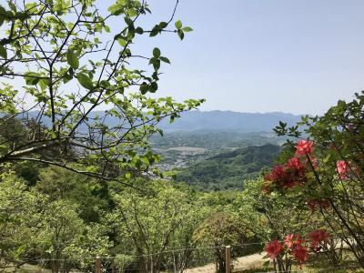 宝登山ハイキング