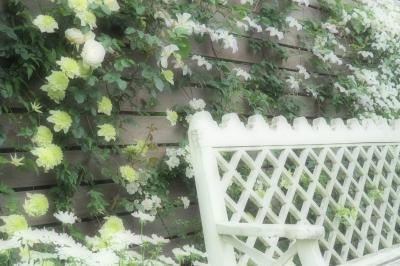 バラの香りに包まれて☆5月の横浜イングリッシュガーデン