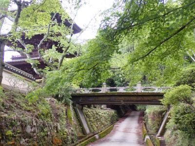 クロスカブで西国観音巡り 7日目 るろうに剣心撮影の三井寺へ