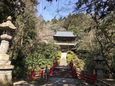 日本禅宗四大道場の名刹 雲巌寺 ナンジャモンジャ