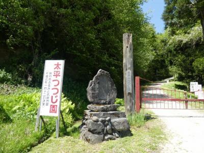 大平山周辺ドライブ つつじ寺に行ったら、コロナで観覧中止