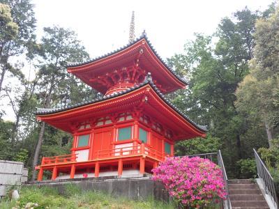 クロスカブで西国観音巡り 8日目 番外 元慶寺・第15番 今熊野観音寺
