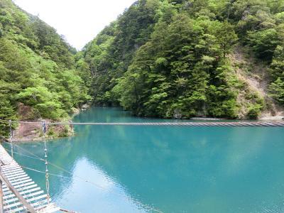 新緑の寸又峡で夢の吊り橋