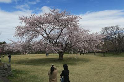 2021GW北海道自転車旅5日目(今金~大沼 111km)