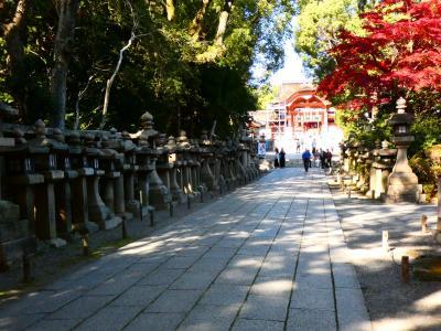 石清水八幡宮 上院参道(Approach for Upper Palace, Iwashimizu Shrine, Kyoto, JP)