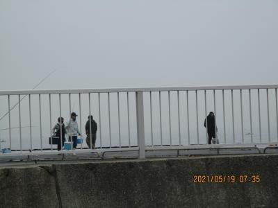 豊浜釣り桟橋5と6月