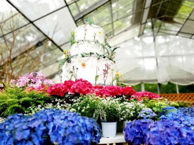 雨あがり 薔薇と木の薫りに包まれる箱根 強羅花扇の旅