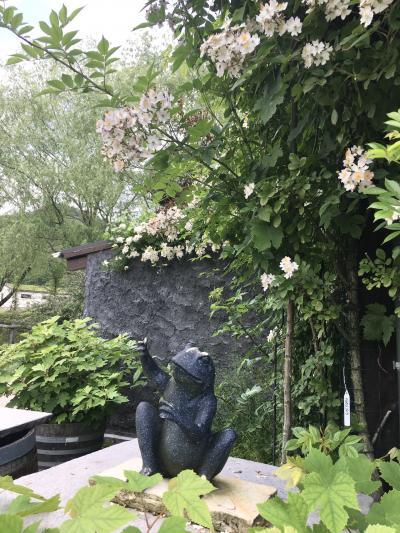 5月の爽やかな風に誘われて久々の日曜ひとりドライブ。バラの香りと人で溢れたローザンベリー多和田2度目の訪問。