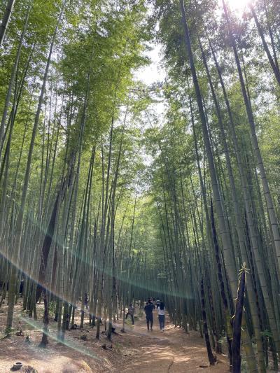 1泊2日釜山の旅