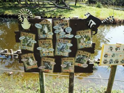 2020年10月、熊本市動植物園に行ってきました。②