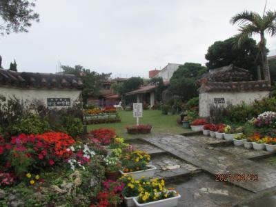 石垣再訪(24)花に囲まれた竹富小中学校。