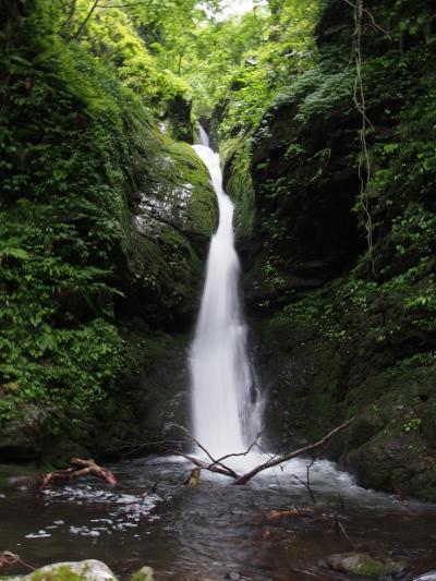 鳥取県日帰り滝めぐり(1) 滝メグラーが行く230 日本の滝百選・雨滝と雨滝渓谷の滝 鳥取市国府町