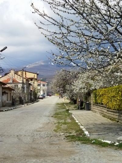 2021年4月ブルガリア旅行3 ソフィア(ブルガリア)→カザンラク→シプカ