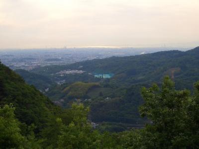 奈良 明神山 散歩の延長で、山登り!!