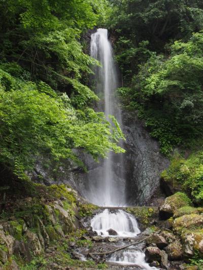 鳥取県日帰り滝めぐり(2) 滝メグラーが行く231 南滝 岩美町