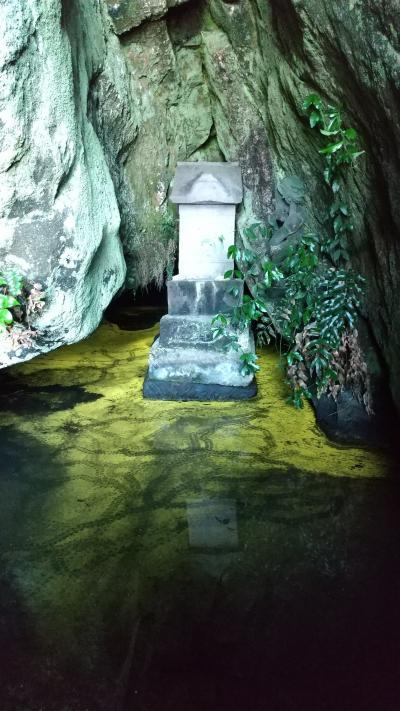内房の竹岡でヒカリモ見て館山の相浜亭で金目定食を頂く。