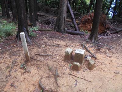 高槻市公園墓地から太閤道へ・・・三角点を比べる。