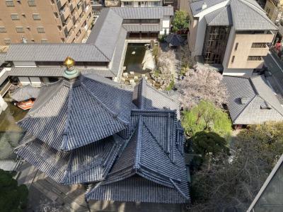 今年は早かった・・・紫雲山頂法寺 六角堂の桜(備忘録)