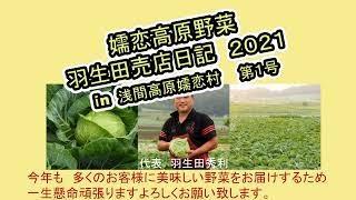 野菜王国浅間高原嬬恋村の植付が始まった~