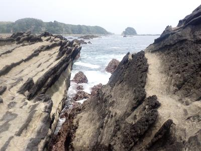 三浦半島「岩礁のみち」松輪港から宮川港まで歩きました。