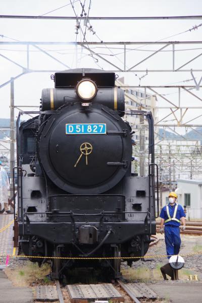 直江津D51レールパークで乗車体験。「雪月花」とも遭遇。