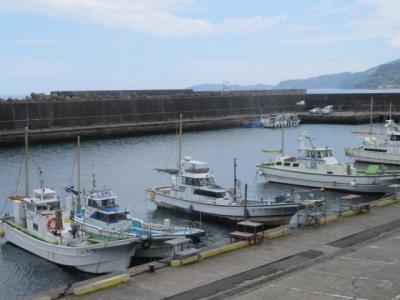 小田原・早川の寺院と漁港を巡る