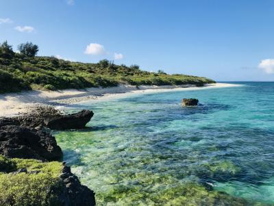 初夏を求めて黒島へ ②黒島ステイその1
