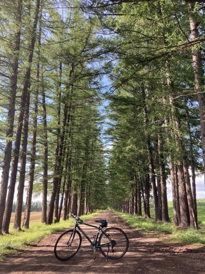 トクたびマイルで帯広1泊2日、自転車一人旅