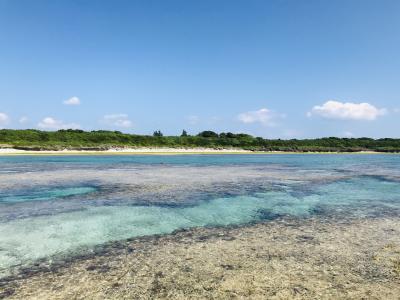 初夏を求めて黒島へ ②黒島ステイその2