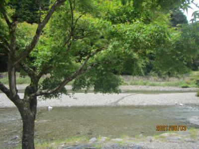 名栗河川広場バーベキュー場でバーベキューと川遊びの後はさわらびの湯で汗と汚れを落とす