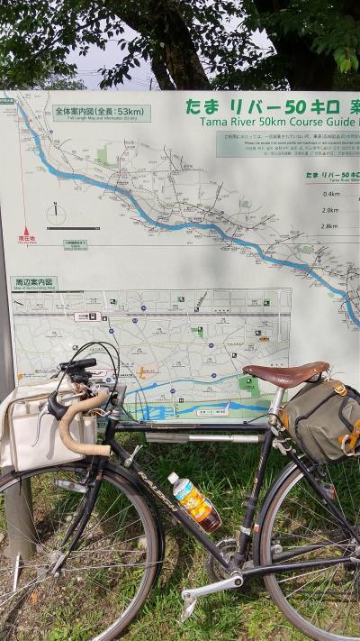 多摩川サイクリングロードリハビリ行