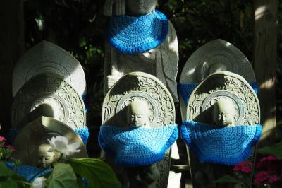 *五月晴れ*若緑色の鎌倉へ☆彡そして憧れのブルーも独り占め!?