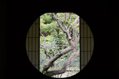 20210606-2 京都 泉涌寺塔頭の雲龍院、拝観再開したけれど…土日だけですと