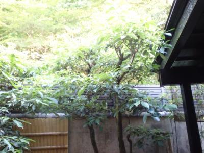 森林浴でデトックス☆了山☆