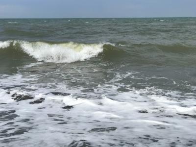 カレイとホタテが食べたくて石狩浜へ