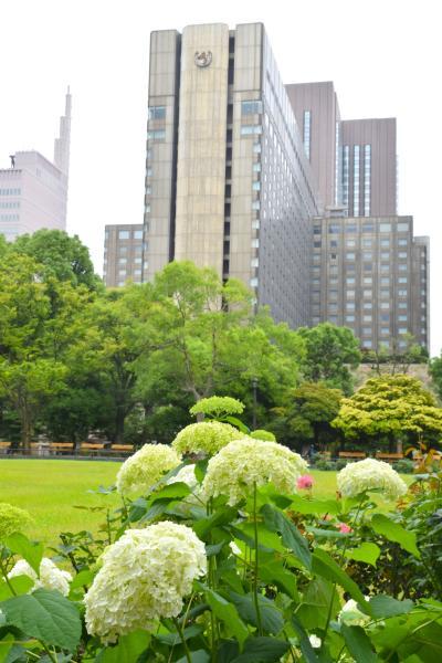 何もしてない自分に謂れなき贅沢を   帝国ホテル 東京 に宿泊
