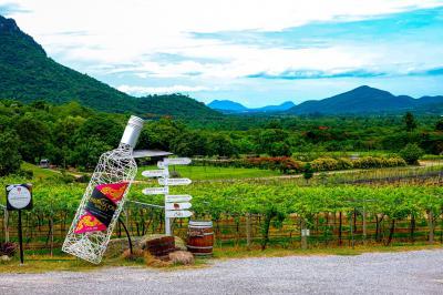 タイ3大ワイナリーの一つ、Monsoon Valley Vineyardでワインをカブ飲みするつもりが・・・