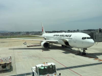 Flight JL316