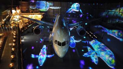 2021年3月#3中部国際空港Part2(3月末営業終了間際フライトパークで映像と音のショー2種類観賞♪)その後、名古屋へ☆彡(動画添付)