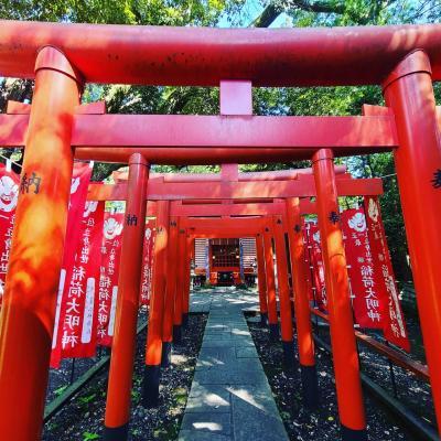 シニアトラベラー! 大杉神社と深作農園満喫の旅
